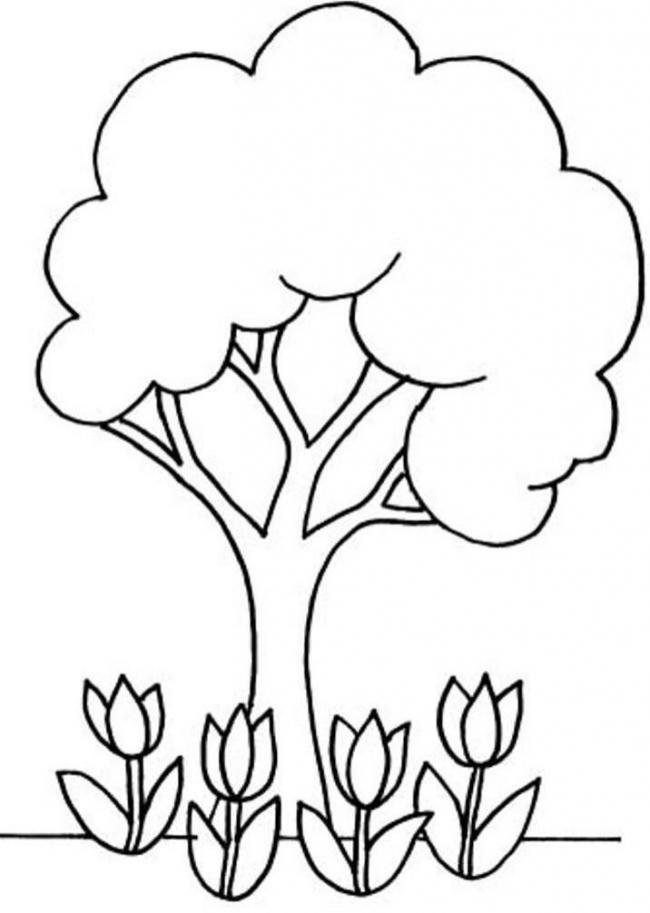 Tranh tô cây và hoa