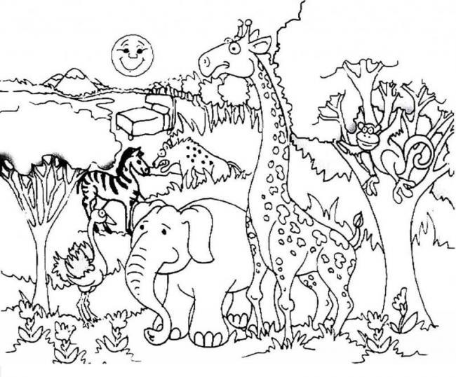 Tranh con vật trong rừng