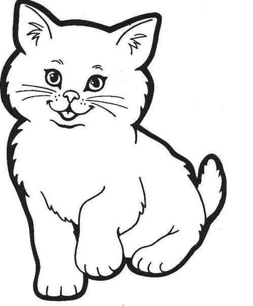 Tranh con mèo ngộ nghĩnh