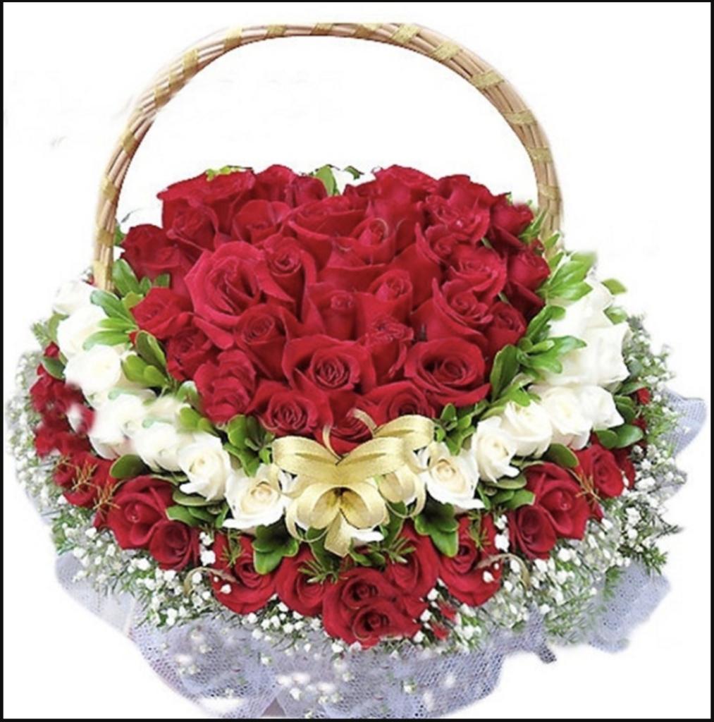 Hoa hồng tặng sinh nhật thể hiện tình yêu nồng cháy, mãnh liệt