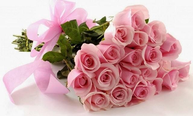 Hoa hồng thể hiện sự tinh khiết và lãng mạn