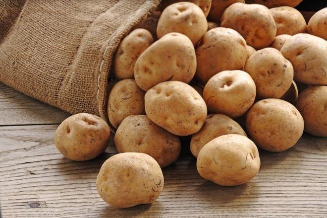 Lựa chọn của khoai tây to đều để làm món ăn