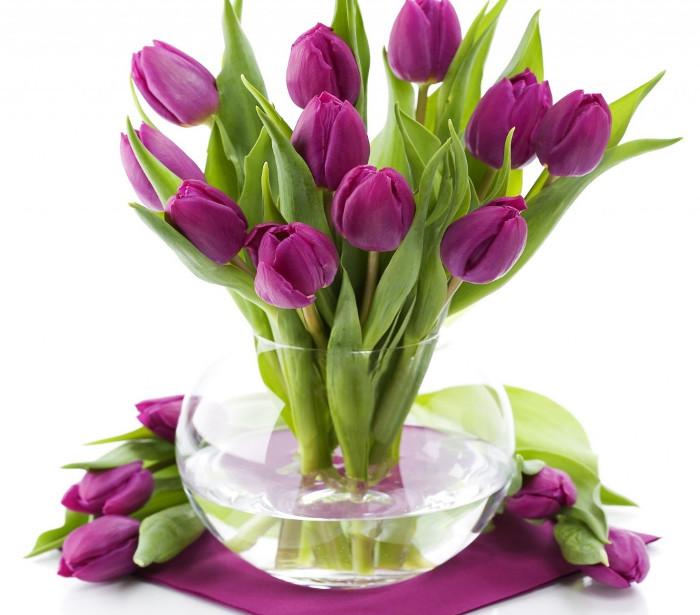 Thay nước thường xuyên cho bình hoa