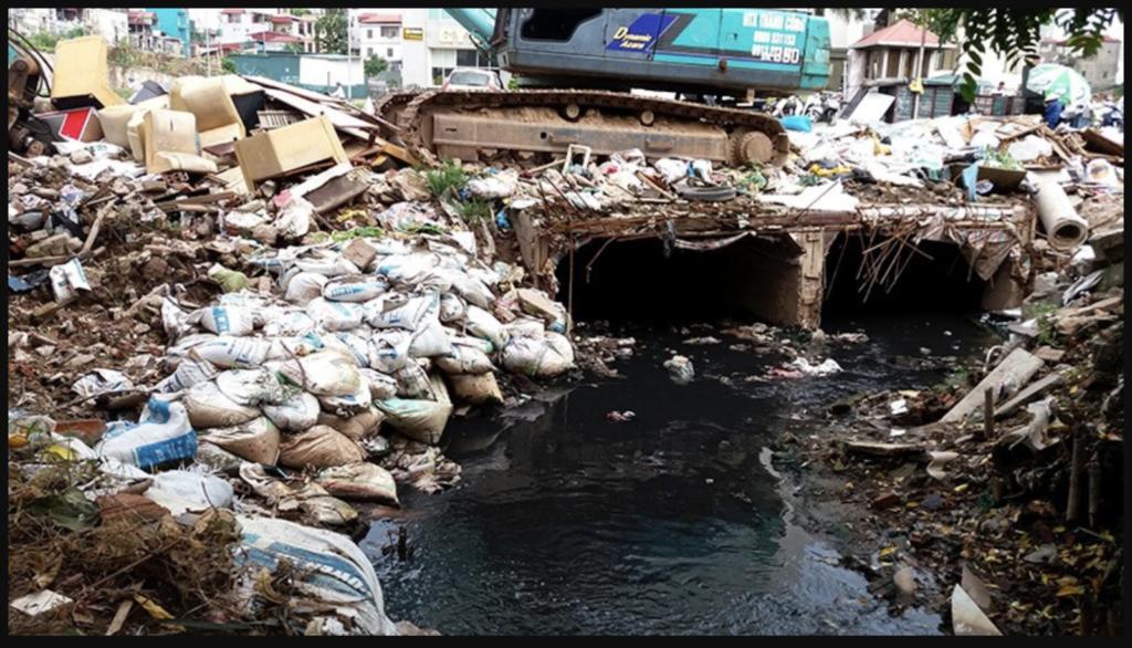 Hậu quả của ô nhiễm môi trường nước