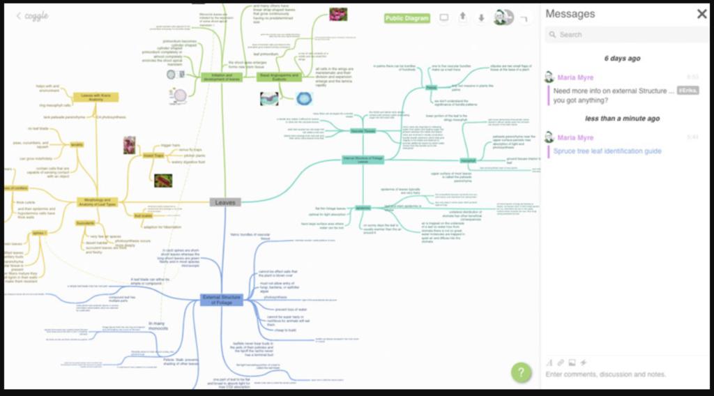 Phần mềm vẽ sơ đồ tư duy online Coggle