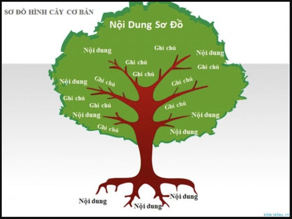 Sơ đồ tư duy hình cây