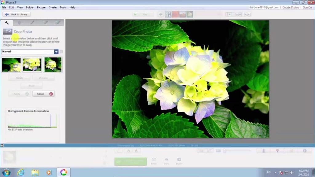 Picasa là phần mềm ghép ảnh có nhiều tính năng đặc sắc