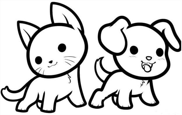 Sự kết hợp đáng yêu giữa chú chó và bạn mèo